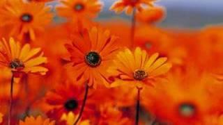 getlinkyoutube.com-Aline Barros - Sonda-me, Usa-me