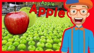getlinkyoutube.com-Fruit for Kids with Blippi | Apple Fruit Factory Tour
