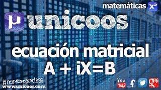 Imagen en miniatura para Ecuación matricial 03