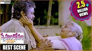 Sneham Kosam Movie|| Chiranjeevi Mother Sentiment Scene || Chiranjeevi,Meena