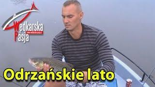 Odrzańskie Lato 2013 - spinning (film wędkarski) klenie jazie bolenie szczupaki