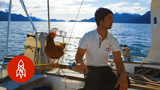 Sailing Solo Around the World … with a Pet Chicken width=