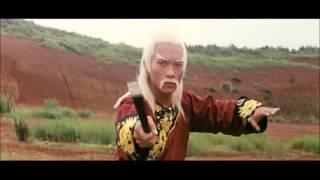 Snake Kung Fu and iron fan