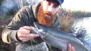 getlinkyoutube.com-Solo Camping and Rainbow Trout Adventure (9 of 12) - MORE fish!