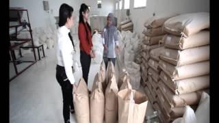 Tepung Kasava Bimo: Tepung Dari Bahan Baku Singkong