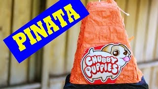 getlinkyoutube.com-Chubby Puppies Worlds Smallest PINATA Super Kids Surprise Adventure Shopkins GIANT Surprises