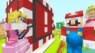 getlinkyoutube.com-Minecraft Wii U - Super Mario Series - Peach Shoots Mario! [114]