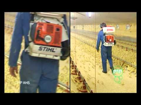 Zootehnie-Probiotice PIP  pentru animale si adaposturi pentru animale( pasari)