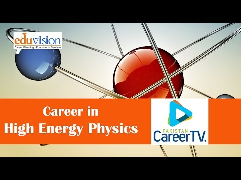 Career in High Energy Physics