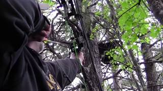 getlinkyoutube.com-Idaho Bear Hunt
