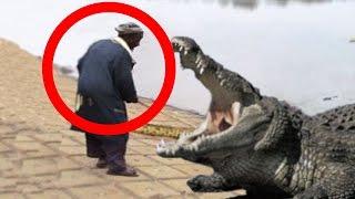 getlinkyoutube.com-هذا الرجل يتكلم مع التمساح ويأمره ان يخرج من بطنه فتاة ابتلعها - فماذا فعل التمساح