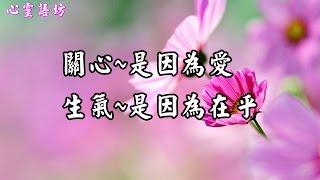 getlinkyoutube.com-【心靈語坊】一轉身就是一輩子,且行且珍惜!