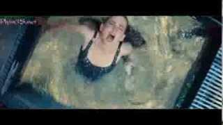 getlinkyoutube.com-Cá Piranha ăn thịt người: Yếu tim đừng xem.