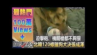 getlinkyoutube.com-迫擊砲、機關槍都不夠狠 北韓120條獵狗「犬決」張成澤!1021213-4
