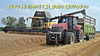 getlinkyoutube.com-New Holland CR 9090 Elevation - Trebbiatura frumento 2014 - Rosina