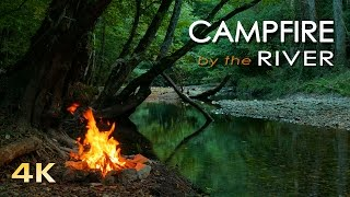 getlinkyoutube.com-4K Campfire by the River - Relaxing Fireplace & Nature Sounds - Robin Birdsong  - UHD Video - 2160p