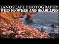 Seascapes and Wild Flowers | Landscape Photography Bedruthan Steps Cornwall | VW Campervan Road trip