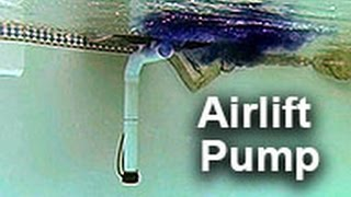 getlinkyoutube.com-Airlift Water Pump by Natural Current - Pool Pond Filter Pump System