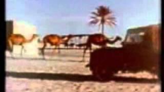 getlinkyoutube.com-علي بن روغه  تريد الهوى