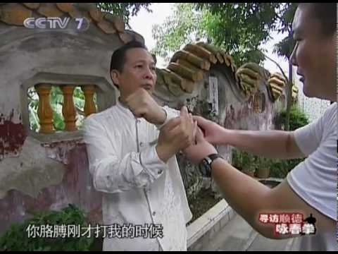 Wing Chun Boxing of Shunde part 1 of 2