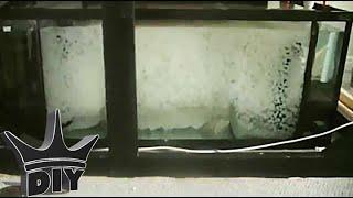 getlinkyoutube.com-HOW TO: DIY moving bed aquarium filter