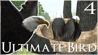 getlinkyoutube.com-A Magnificent New Nest & Marvelous Mate!! • Ultimate Bird Simulator - Episode #4