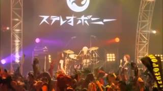 getlinkyoutube.com-【中日歌詞】STEREOPONY - ヒトヒラのハナビラ(Final Live)