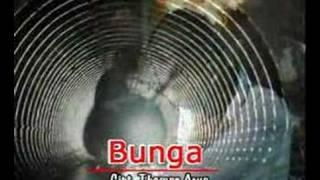 getlinkyoutube.com-Thomas - Bunga