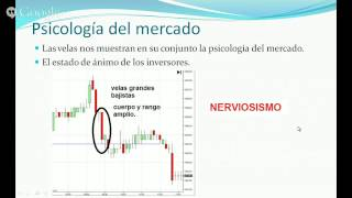 Webinar Francisca Serrano