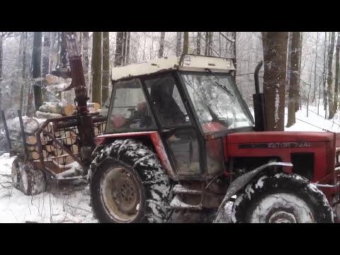 Zrywka w lesie tumiany 2