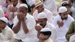 getlinkyoutube.com-Eid-ul-Zuha or Bakr Eid: a documentary film