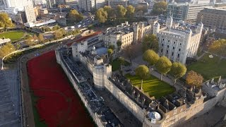 The Tower of London Poppies from above