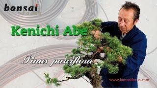 getlinkyoutube.com-KENICHI ABE WHITE PINE MASTERCLASS