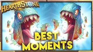 getlinkyoutube.com-Best Moments 84 | Hearthstone Gadgetzan