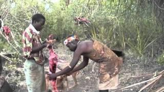getlinkyoutube.com-Hadzabe, la última tribu cazadora y recolectora de África 1