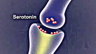 overdose on seroquel and klonopin