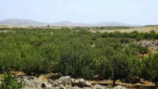 getlinkyoutube.com-جبل السنديان - اغاني  تراثية جبل العرب  السويداء