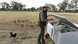 getlinkyoutube.com-The NEW Chicken Caravan 30