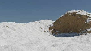 Making realistic snow in 3ds max