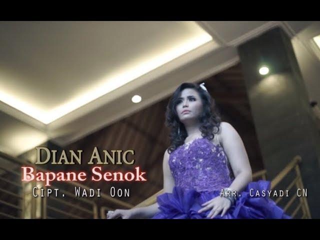 BAPANE SENOK - DIAN ANIC karaoke dangdut (Tanpa vokal) cover