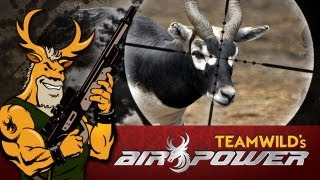 Extreme Airgun Hunting - Black Buck with the Benjamin Rogue .357