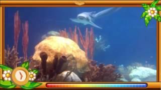 getlinkyoutube.com-Most beautiful creature video 5 - Wildlife, animals and bird photography