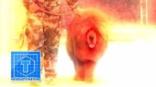 getlinkyoutube.com-Der teuerste Hund der Welt (2) | Tiere | ToolTown