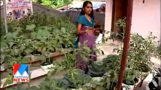 getlinkyoutube.com-Farming in rain season