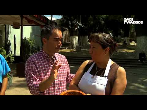 La ruta del sabor - Salsa de tecol. Tlaxcala, Tlaxcala (12/03/2013)