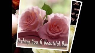 getlinkyoutube.com-Happy Tuesday สุขสันต์วันอังคาร WP