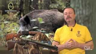 getlinkyoutube.com-Hunting Field Test: Pedersoli Boarbuster Lever Action in .45-70