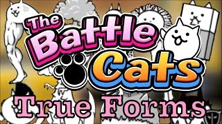 "getlinkyoutube.com-How To Get ""Basic"" True Forms - The Battle Cats"
