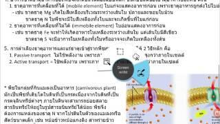 VDO ชีววิทยา 18 การลำเลียงสารในพืช ชุดที่ 03