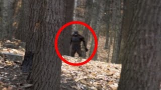 getlinkyoutube.com-4 Terrifying BIGFOOT Encounters Caught on Camera